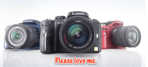 Panasonic Lumix DMC-G1 Digital Camera - Hands-On Preview - The Imaging Resource!-1