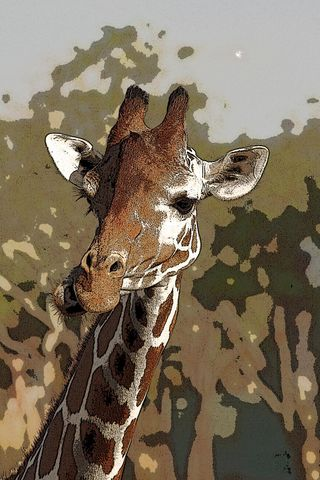 Jan 2005 Disneyworld giraffe 2 pop art